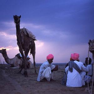 Camel men